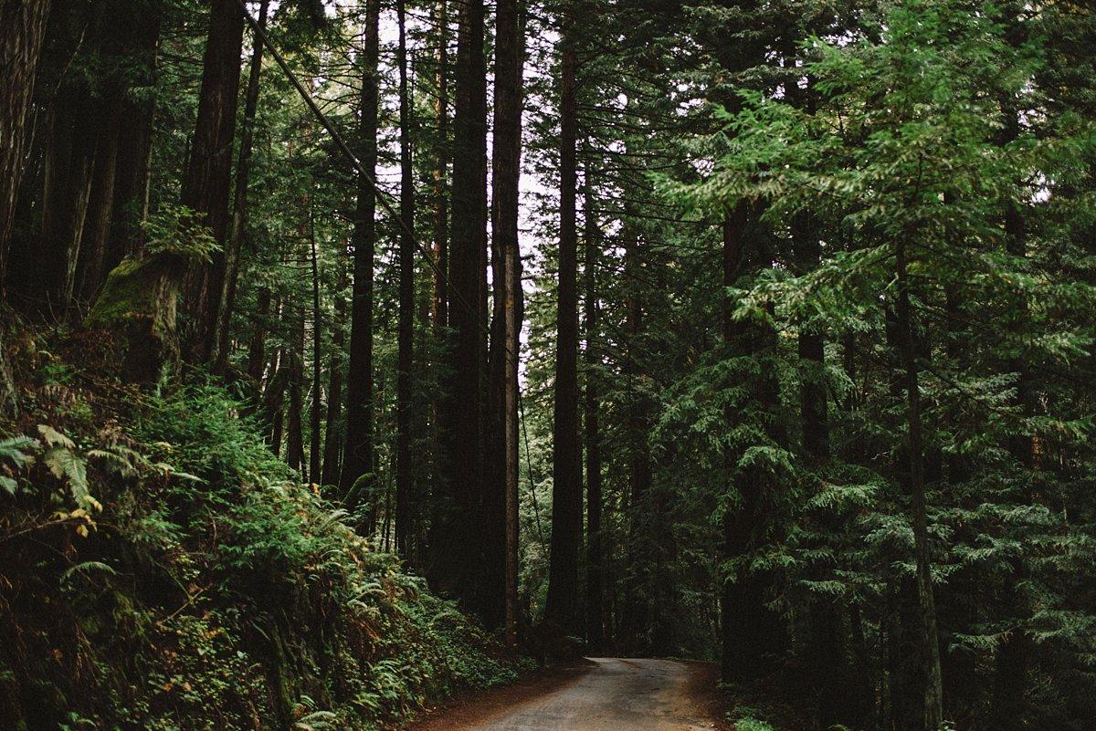 CaliforniaRoadtrip Big Sur_0057